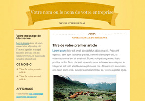 Modele newsletter Country