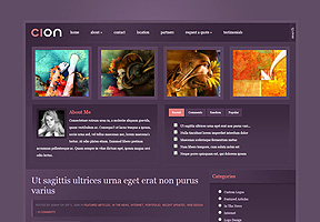 Mise en page site web Johnson 3